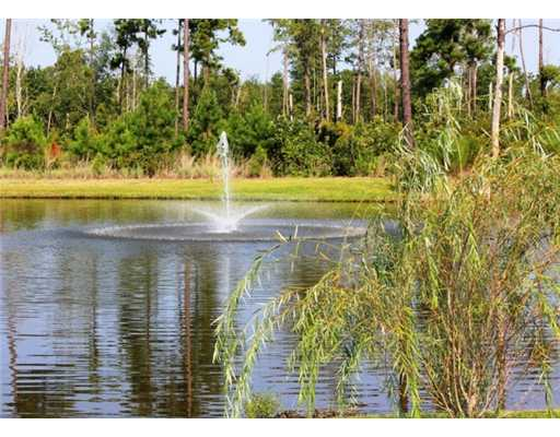 lake with fountain